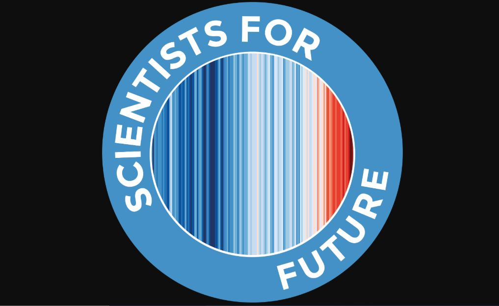S4F Logo