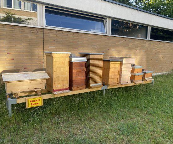 Bienenbeuten am Zentralcampus